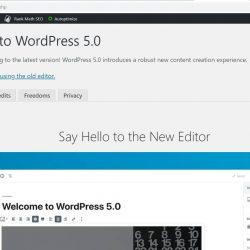 Pengalaman WordPress 5.0 Terbaru